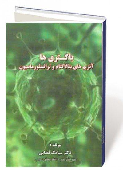 باکتری ها، آنزیم های بتالاکتام و ترانسفورماسیون